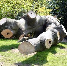 Спил и утилизация деревьев